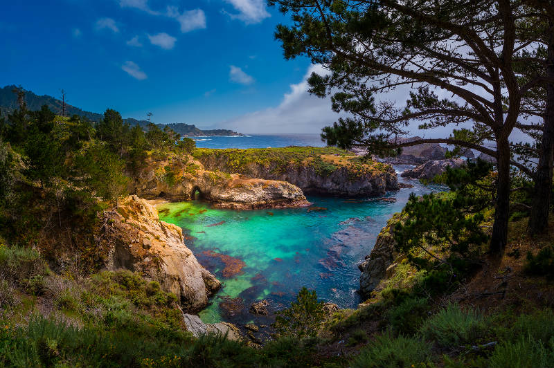 Point Lobos, near my home on the Monterey Peninsula. We are so going here on our retreat!