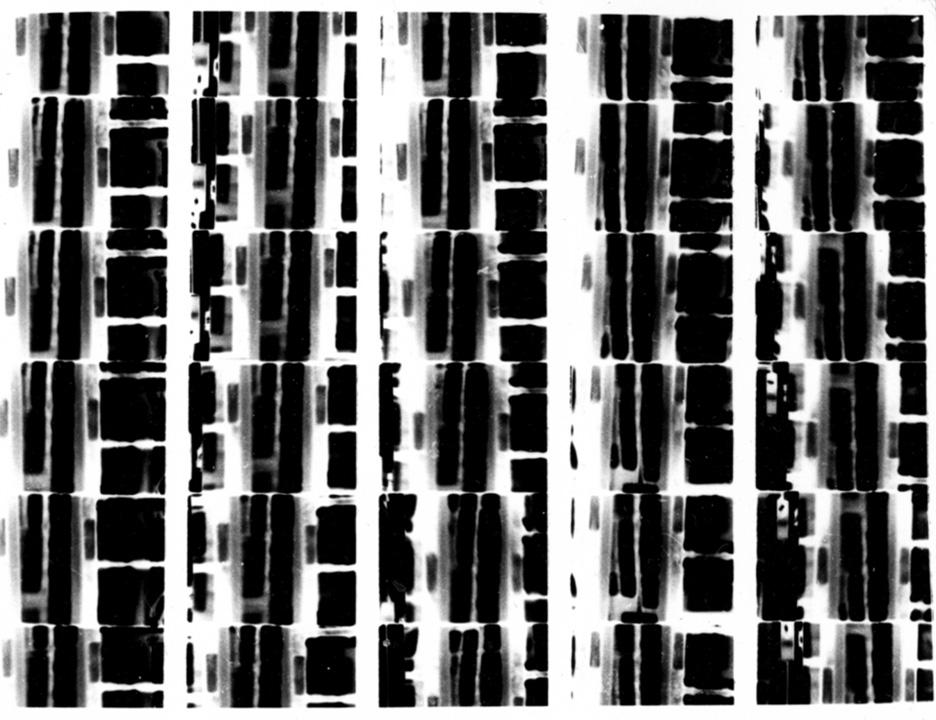 super8print3_sm.jpg