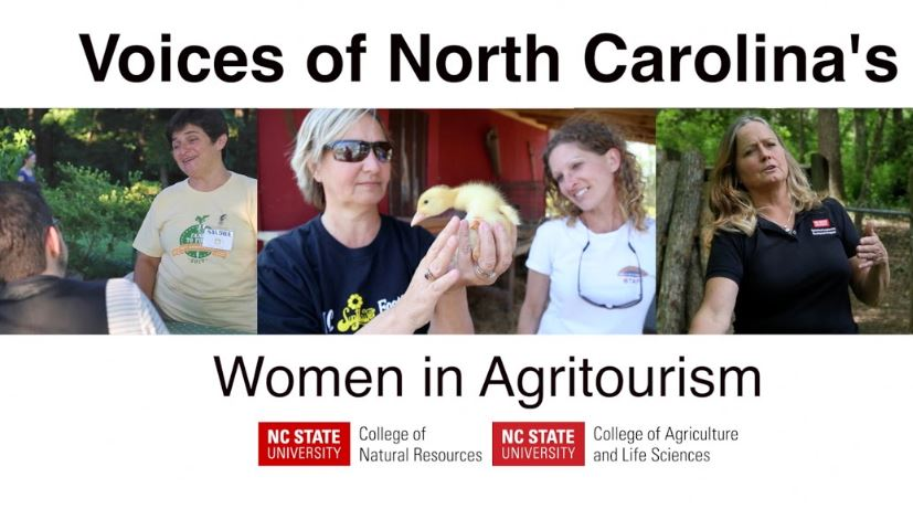 Women in Agritourism image.jpg