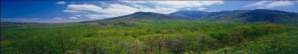 Georgia mountains.jpg