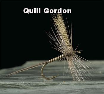 Quill Gordon.jpg