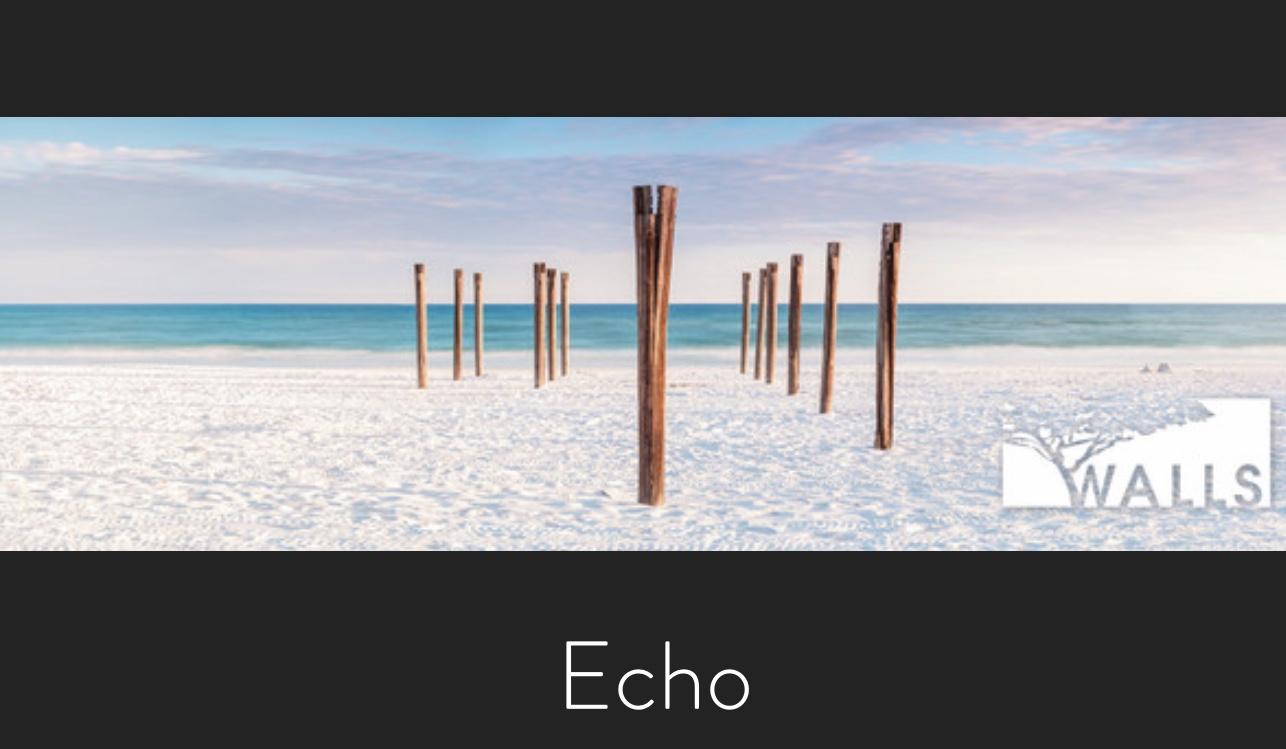 B. Walls, Echo.jpg