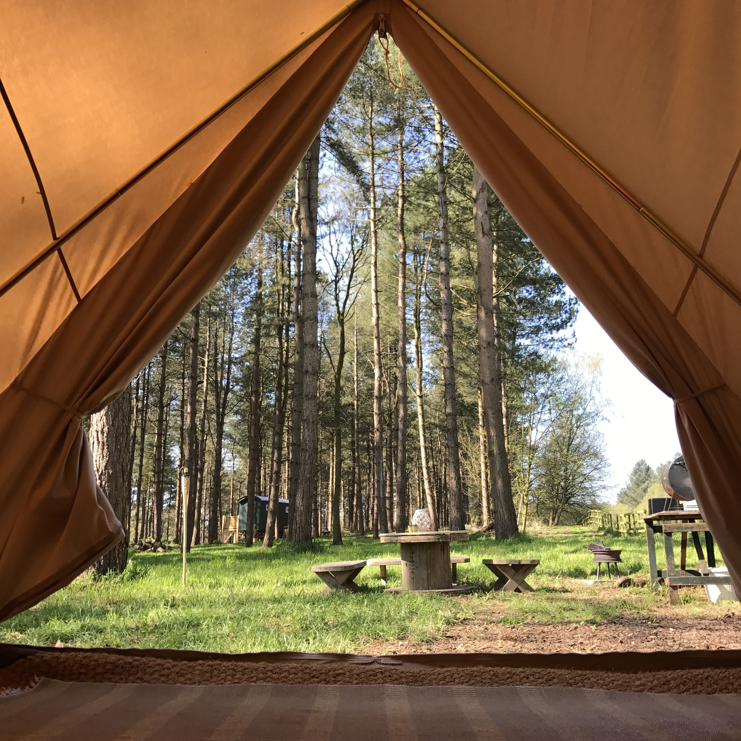 Room with a view Family Glamping