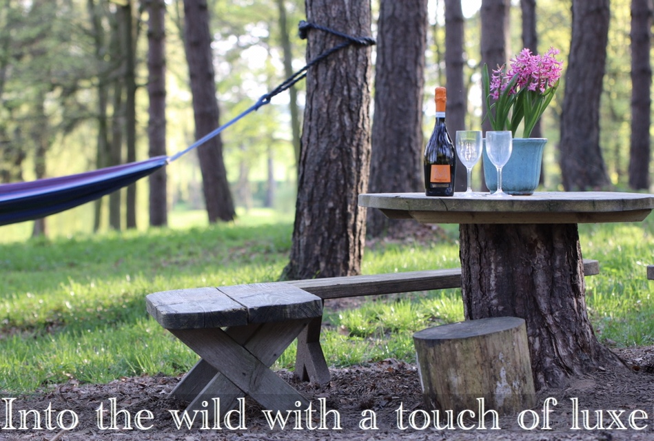 When the kiddies are tucked up why not relax and unwind immersed in nature. Experience the health benefit of forest bathing.
