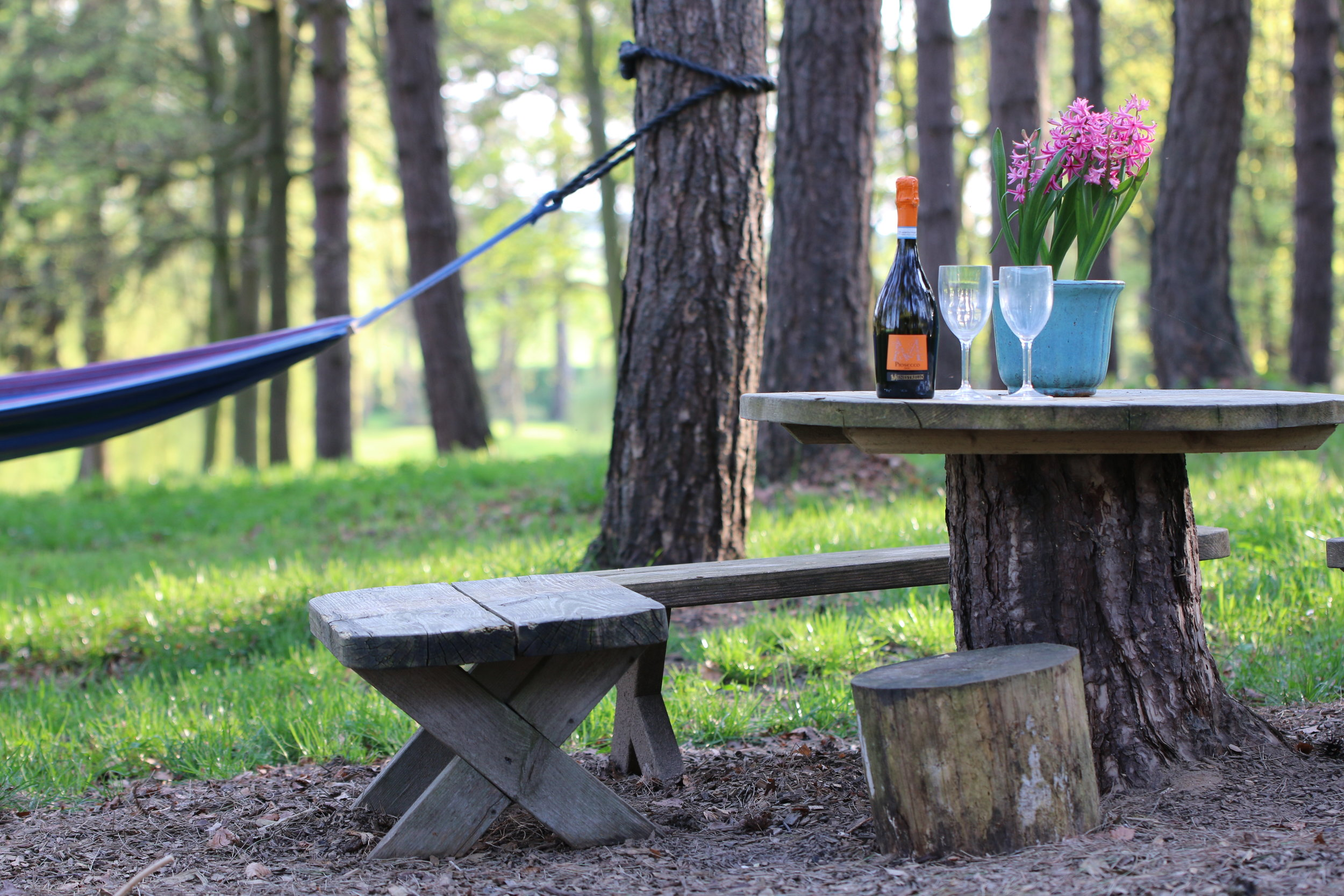 Sneak off and share a tipple in the woods