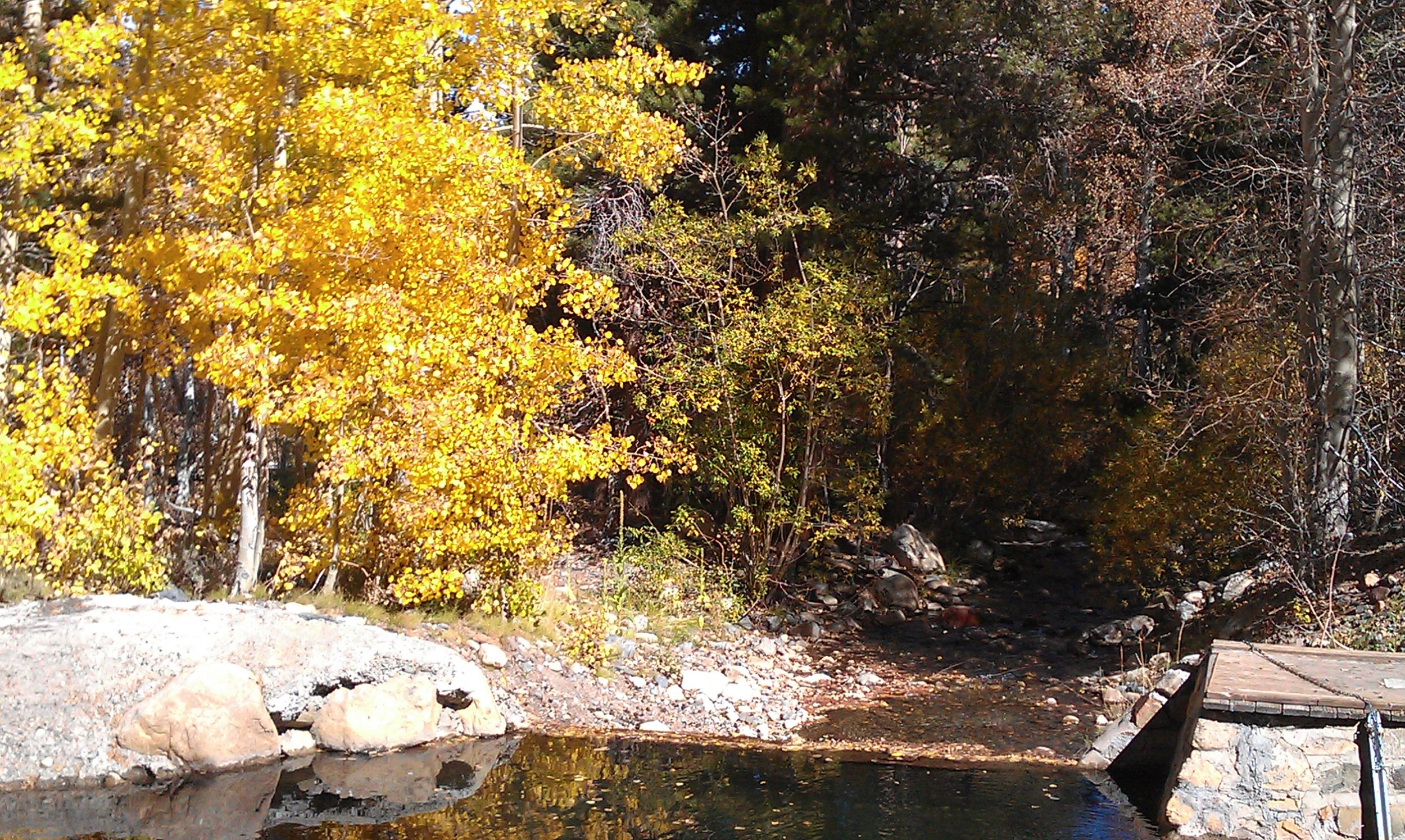 eastern sierra autumn 013.jpg