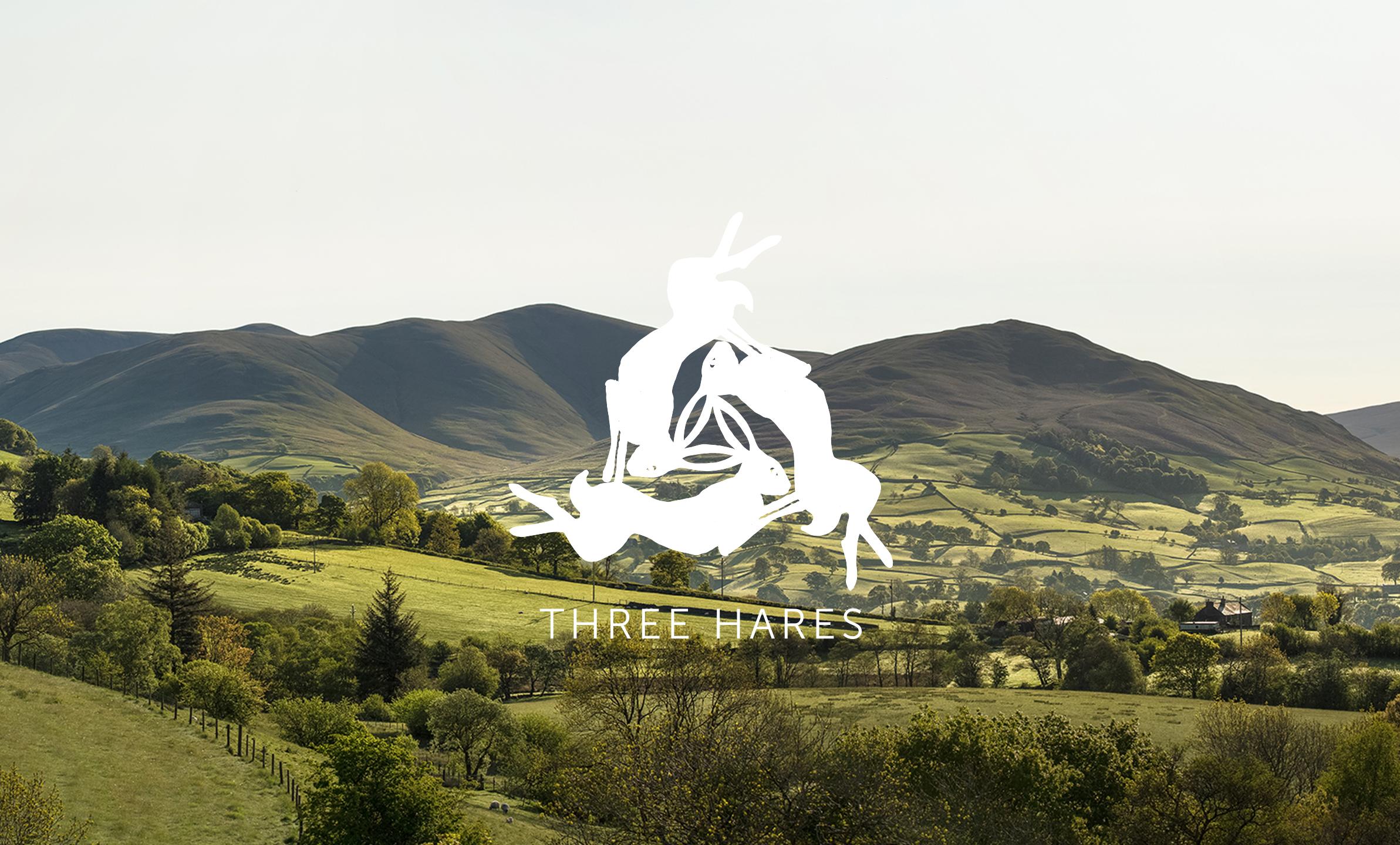 TH-branding.png