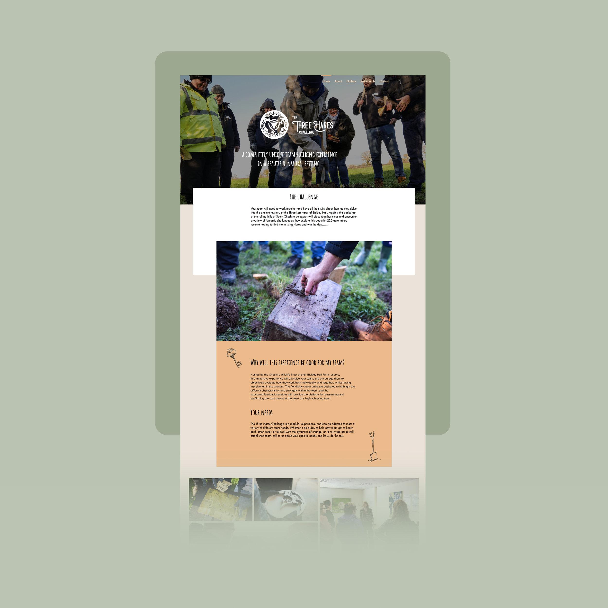 Next Project - Branding & Webdesign