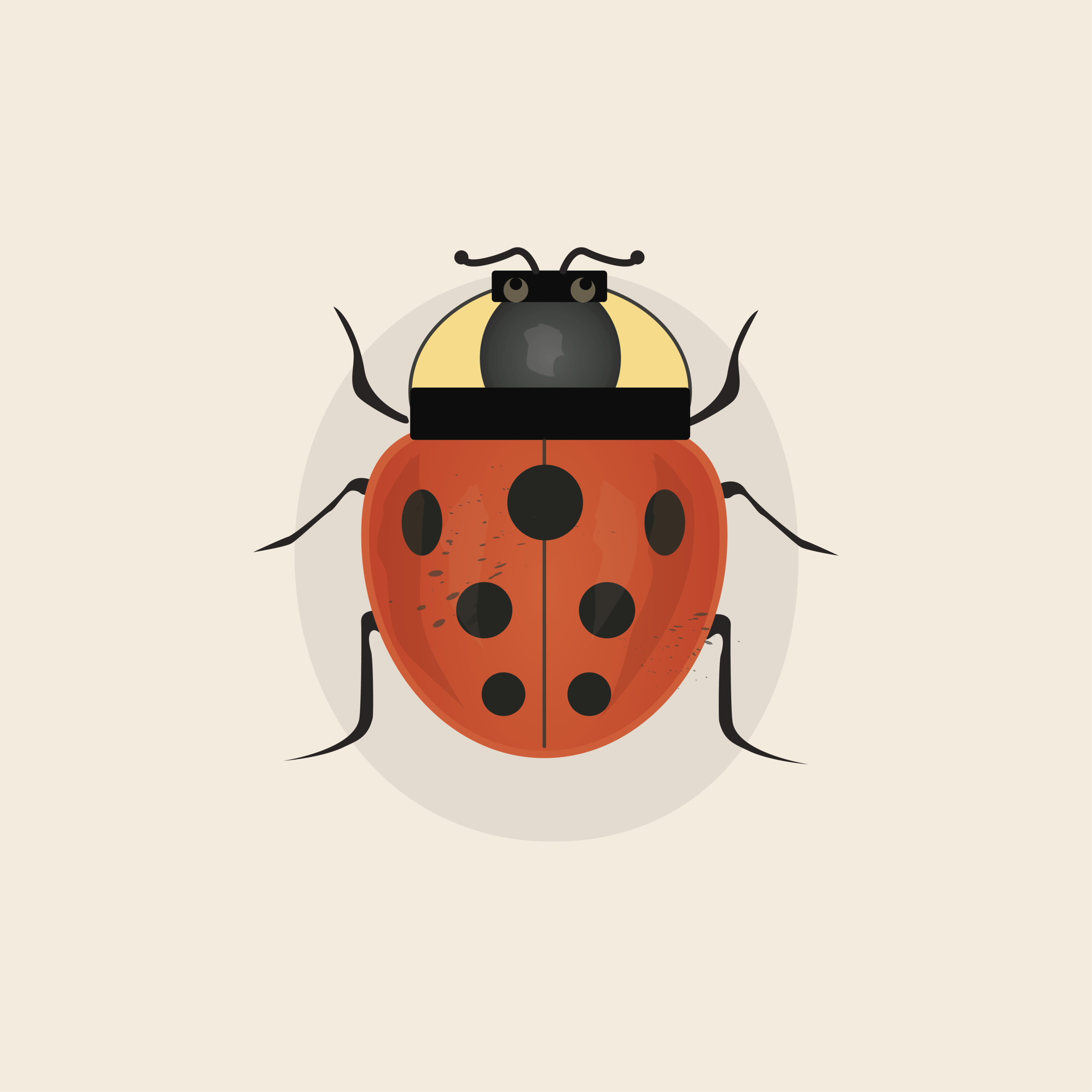 lady bug.png