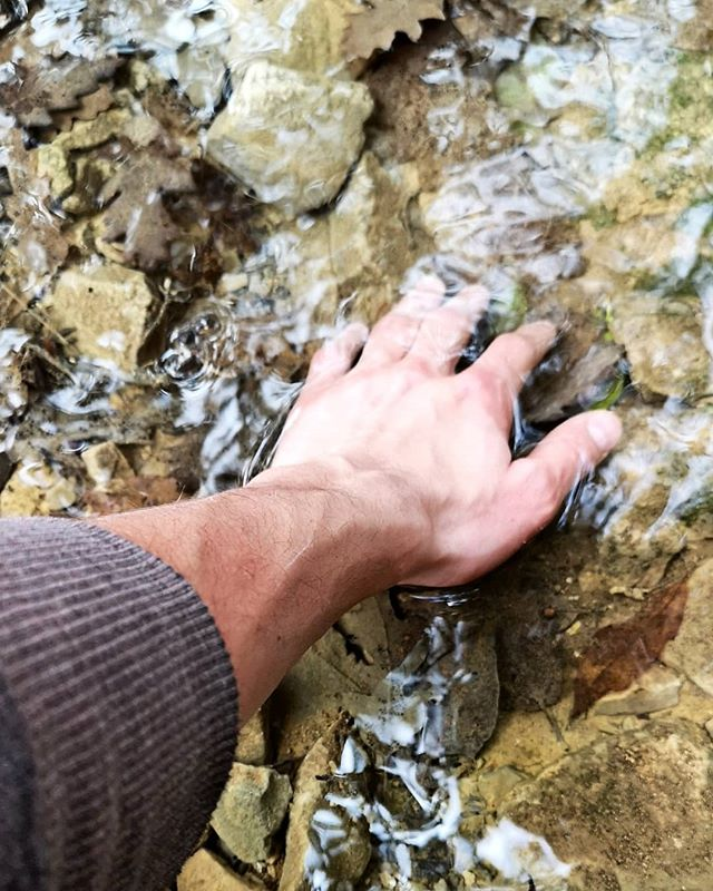 Curious Hands.  #nature #hands #research #ideas #pain #pleasure #shapes #beauty #water #spine #trees #leaves #plants #everywhere #hills #mountain #colors #photography
