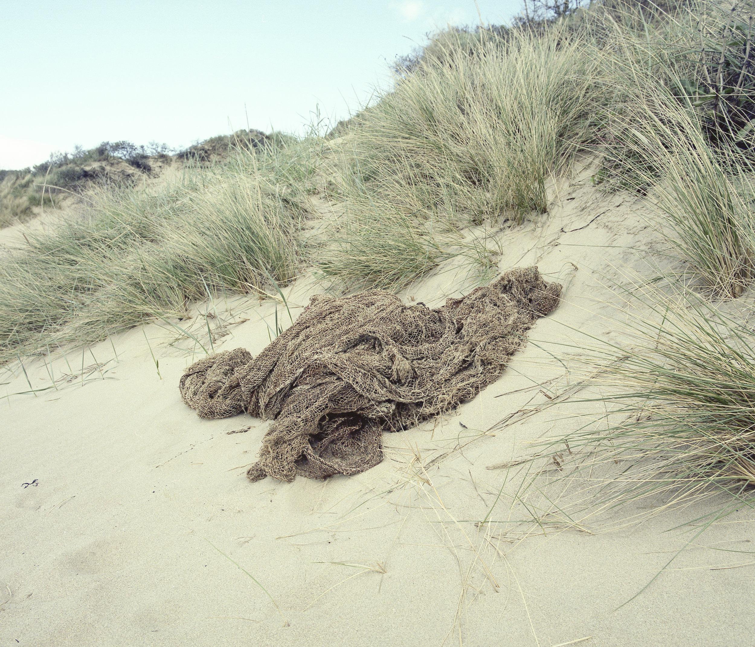 beachnet.jpg