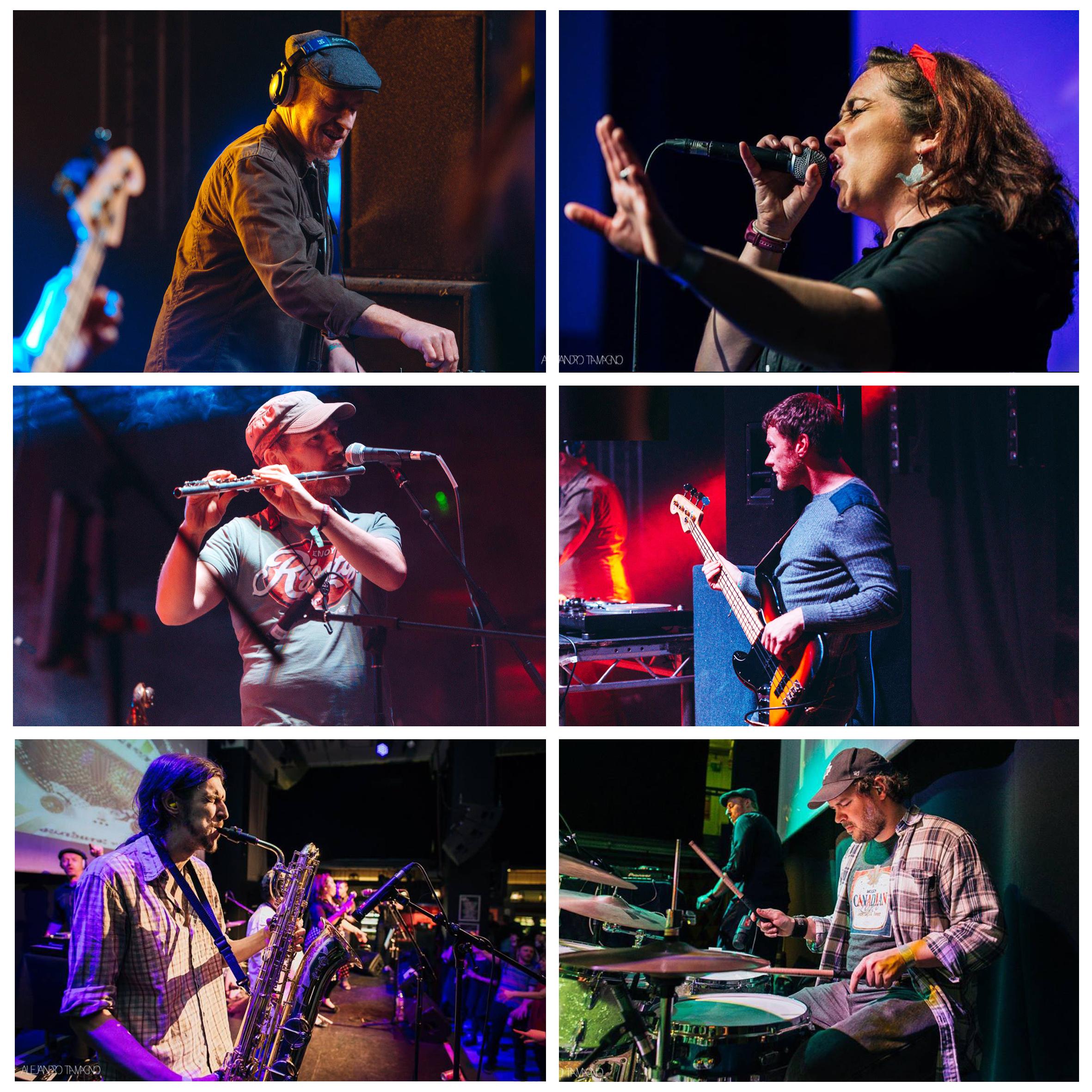 Daytoner Colour Collage 2017 - Steven Cantrill.jpg