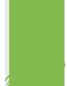 Tesla+Green+Economy+Congress.png