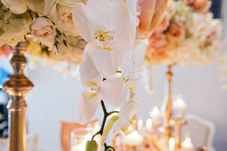 new_york_tristate_connecticut_wedding_designer_lush.jpg
