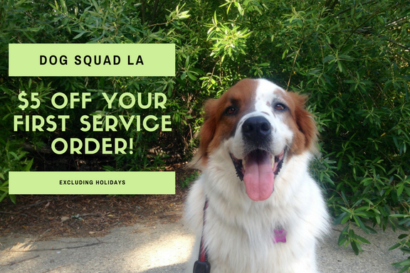 DOG SQUAD - $5 OFF COUPON.png