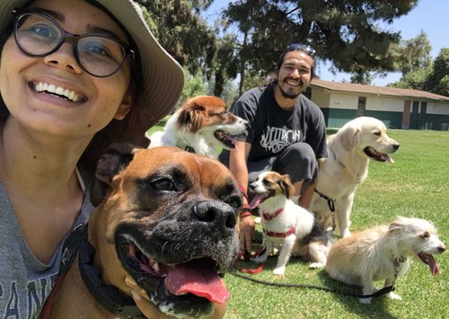 Courtney & Tony - I'm Courtney and this is my boyfriend Tony and we are the pack leaders of Dog Squad LA. We live in a farmhouse in Reseda with our dogs, rabbits, chickens, and guinea pigs and each day we conquer the streets of SFV with tons of fun dogs! On our free time you can almost always find us at home, because let's be real we're usually binge-watching Netflix or throwing a ball around in the backyard.Want to meet our Squad? You can find us on instagram @smallfarmbigcity
