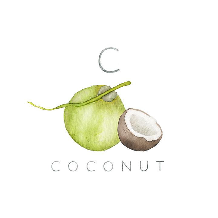 coconut copy.jpg