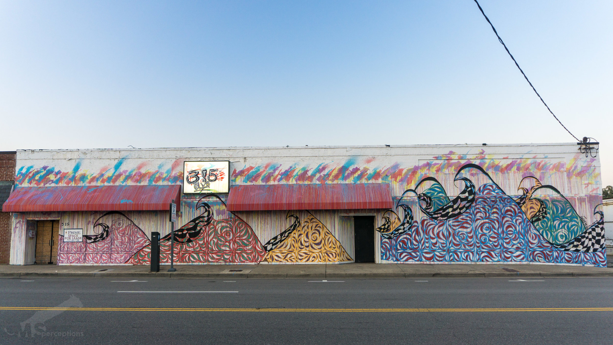 This mural by MS.perceptions and Parrish Majestic covers over 2,400 square feet on the front and side of 3!5 BLVD.