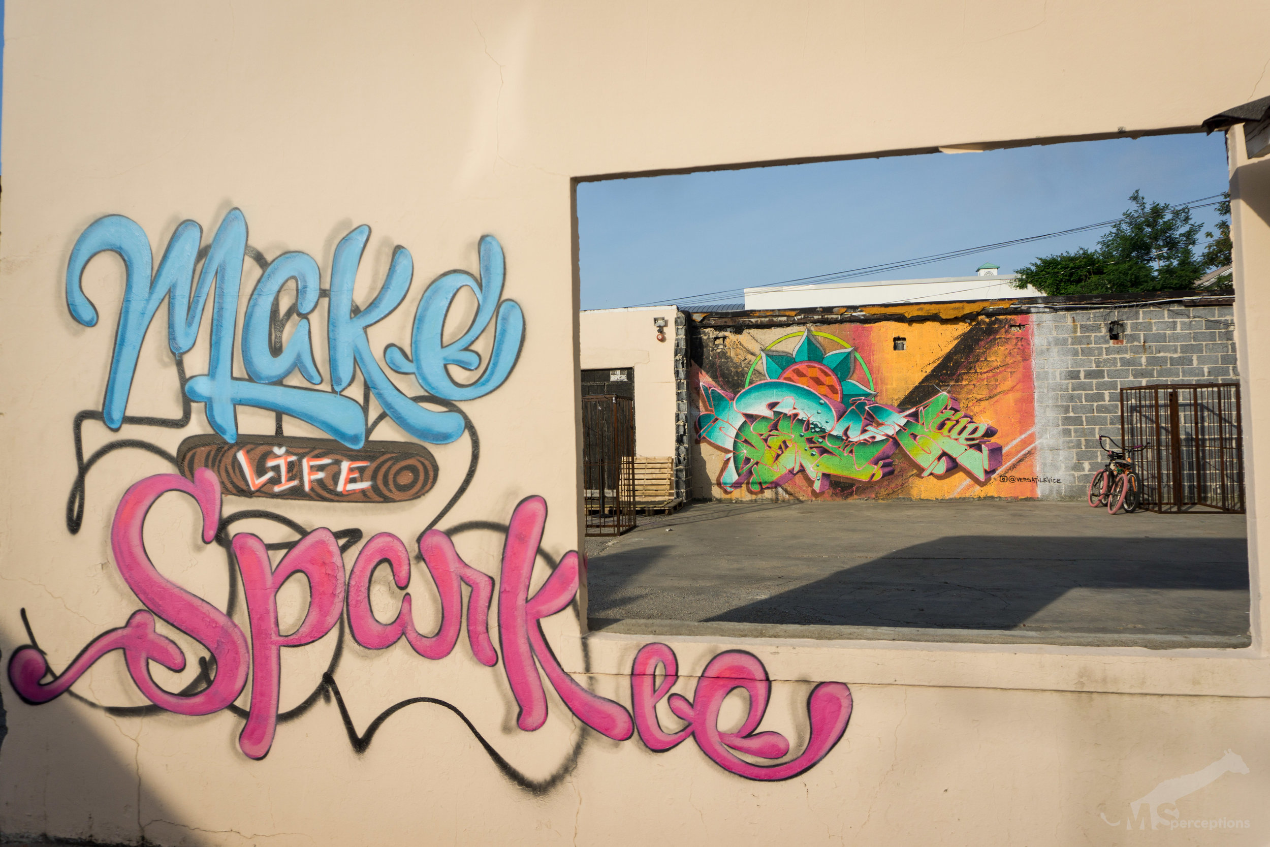 Vice used the unique outdoor layout to his advantage in creating this vibrant mural with a positive message.