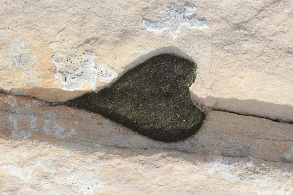 Lichen-Heart-Slickrock.jpg