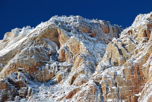 Snow-in-Zion.jpg