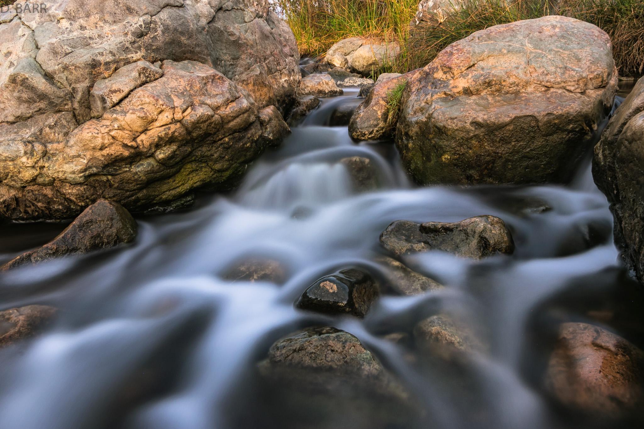 Los Penasquitos Canyon Preserve (San Diego, Ca.)