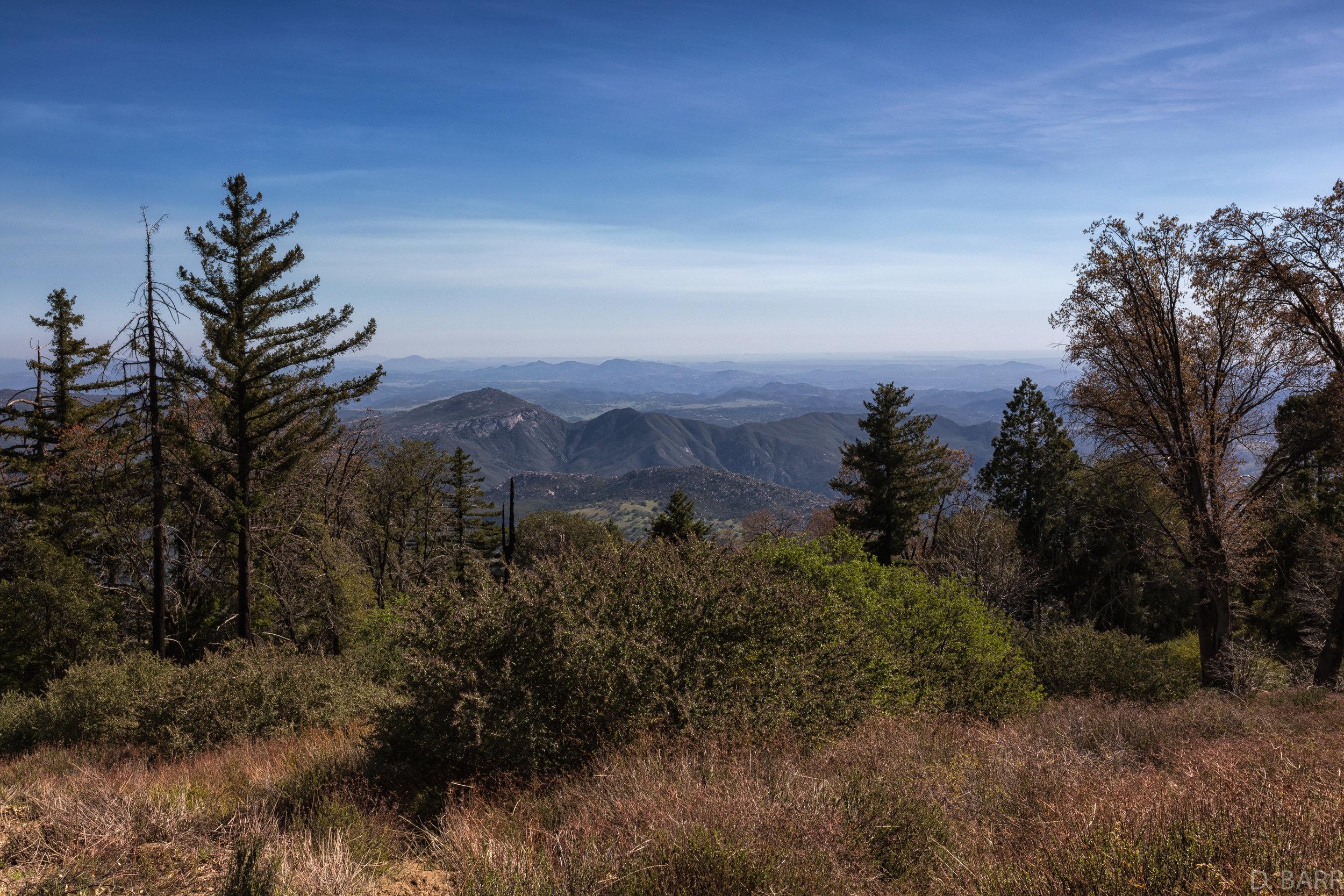 Palomar Mountain, Ca.