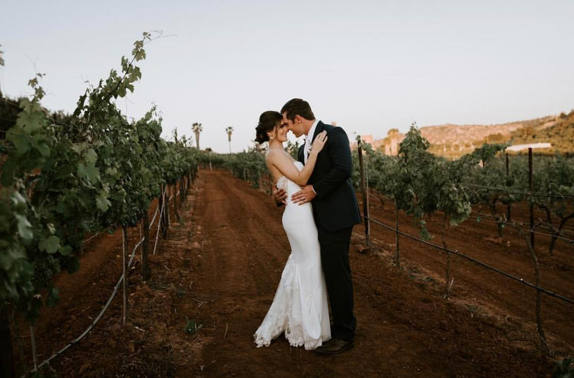 Bride and grown hugging in vineyard.