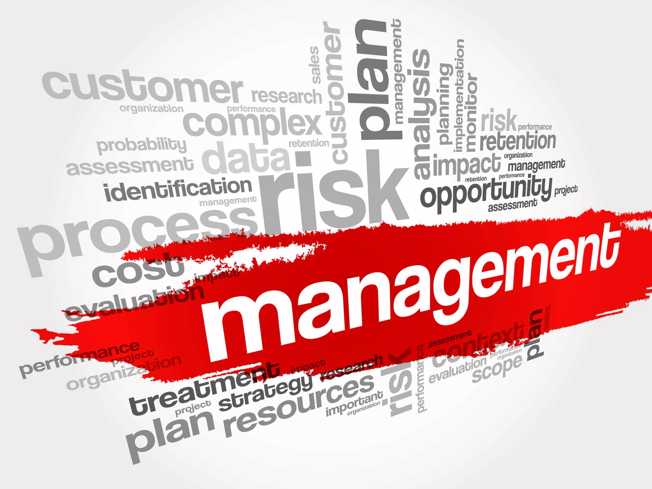 Image of Risk Management words