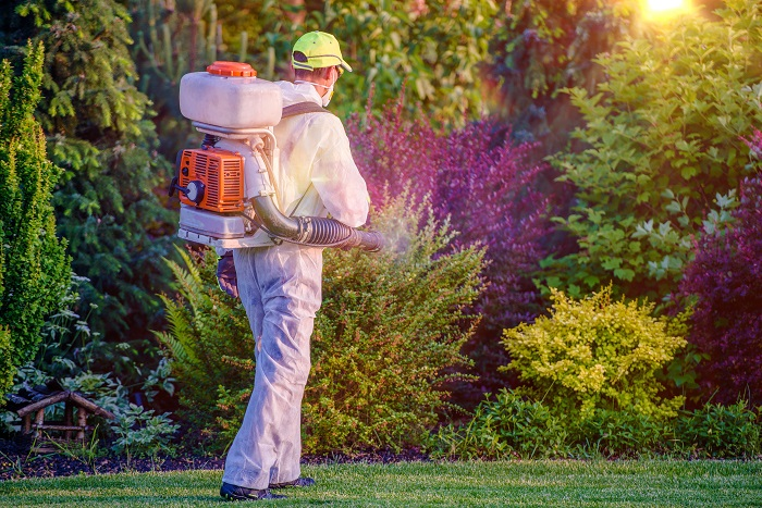 Image of landscaper spraying plants with pesticides.