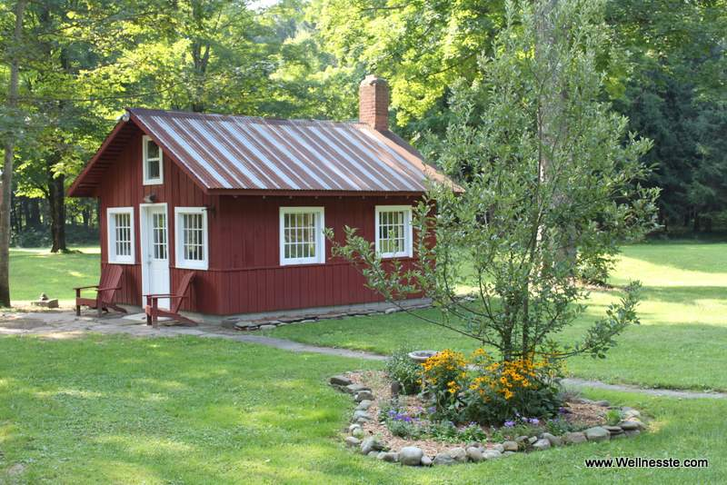 Thoreau's Cabin- Cabin Rentals at Wellnesste Lodge in Taberg NY