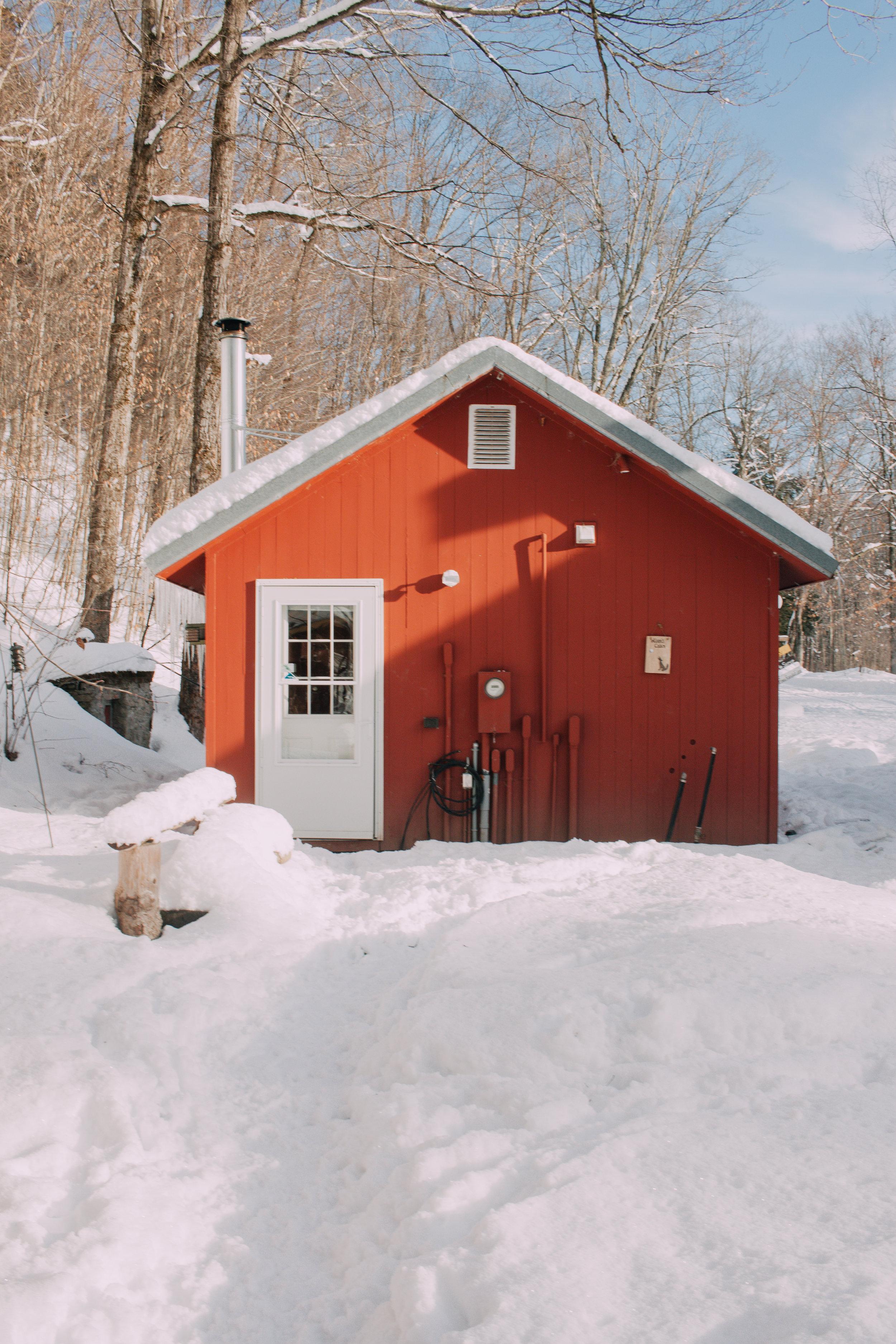 Cabin rentals in all seasons.  Wilsons cabin at Wellnesste Lodge.