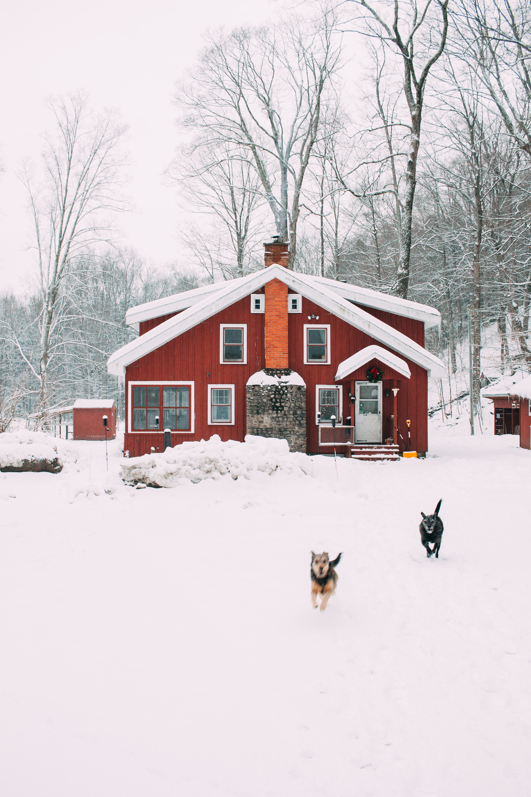 Winter adventure travel- your very own Upstate NY cabin rental at Wellnesste Lodge.