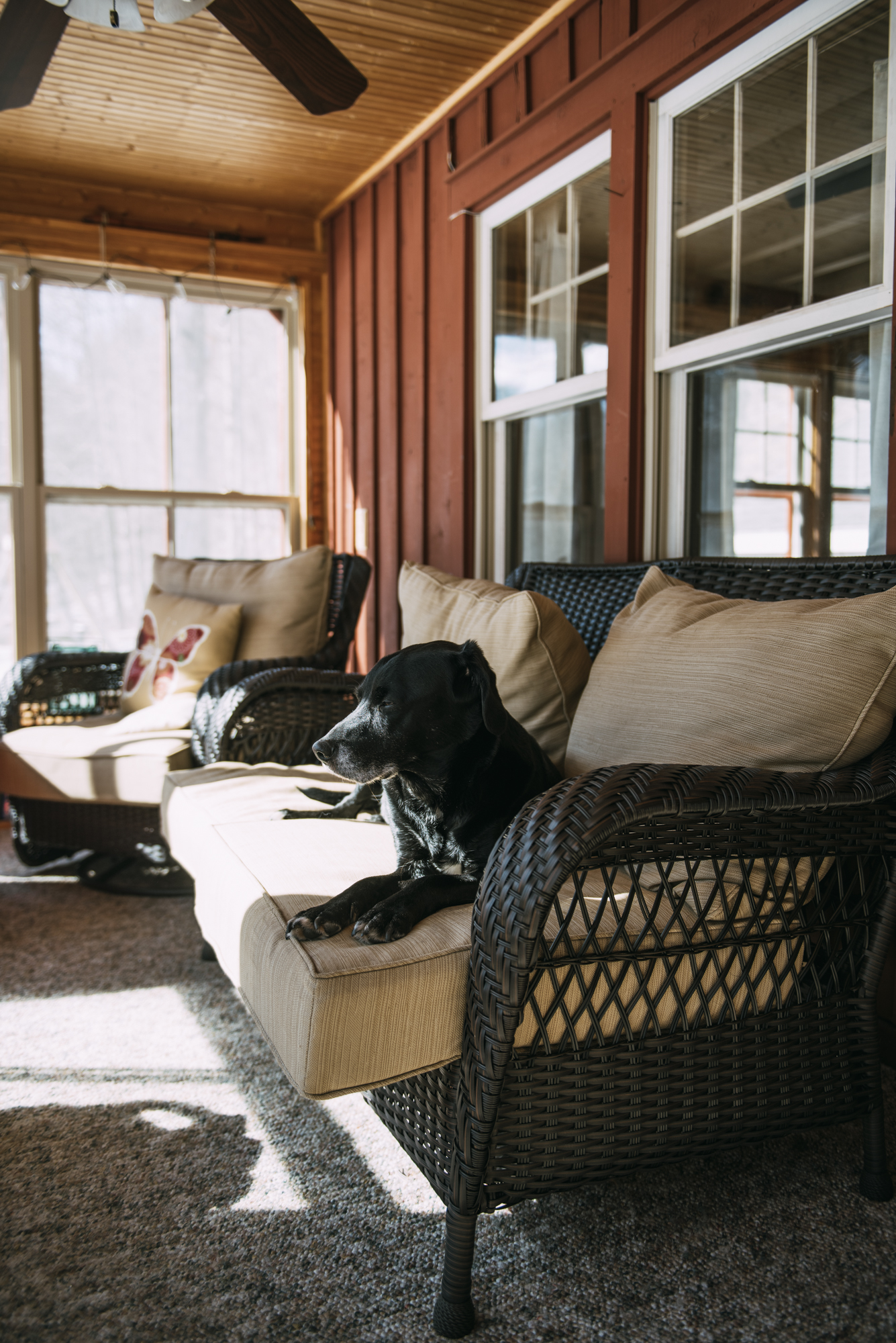 Nature loving, outdoor adventuring and just chilling out- Wellnesste Cabin Rentals offers a unique setting just for YOU.