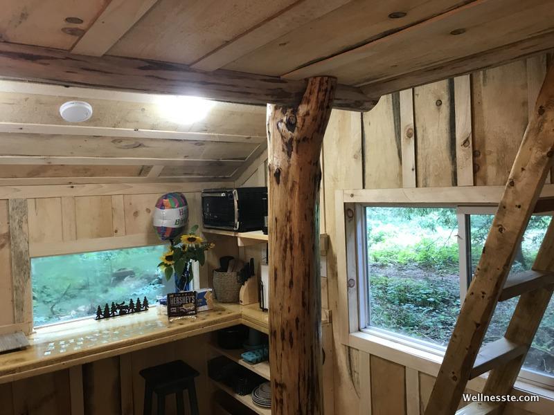 Goodall's Treehouse Cabin at Wellnesste Lodge in Upstate NY_Main Floor 3.jpg