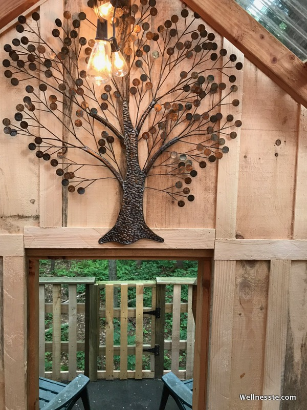 Goodall's Treehouse Cabin at Wellnesste Lodge in Upstate NY_Top.jpg