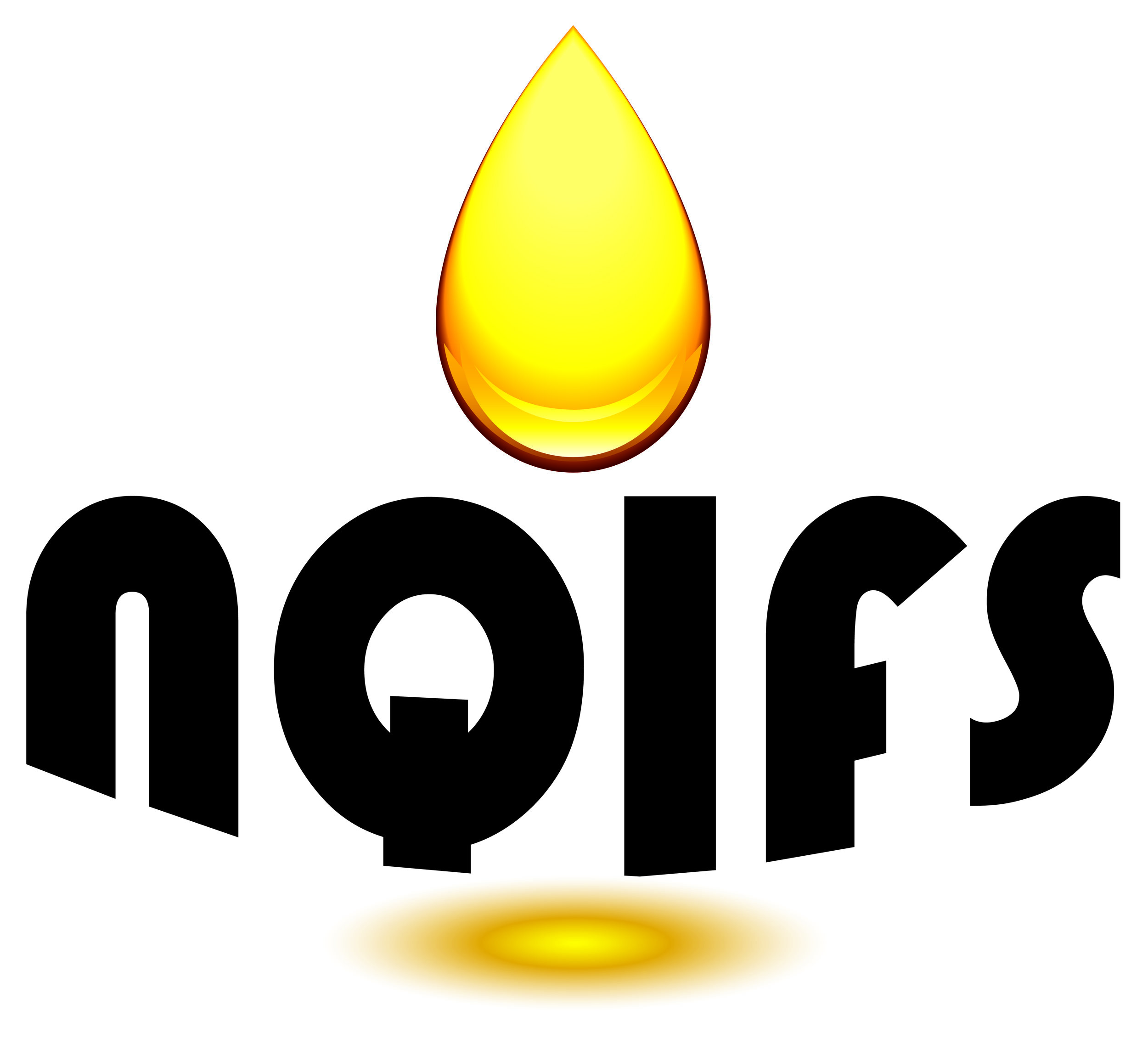 NQIFS logo.jpg