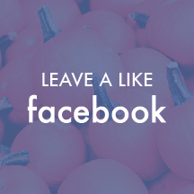 social pages-01.jpg
