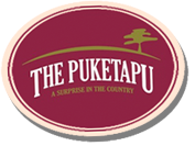 coaster-thepuketapu.png