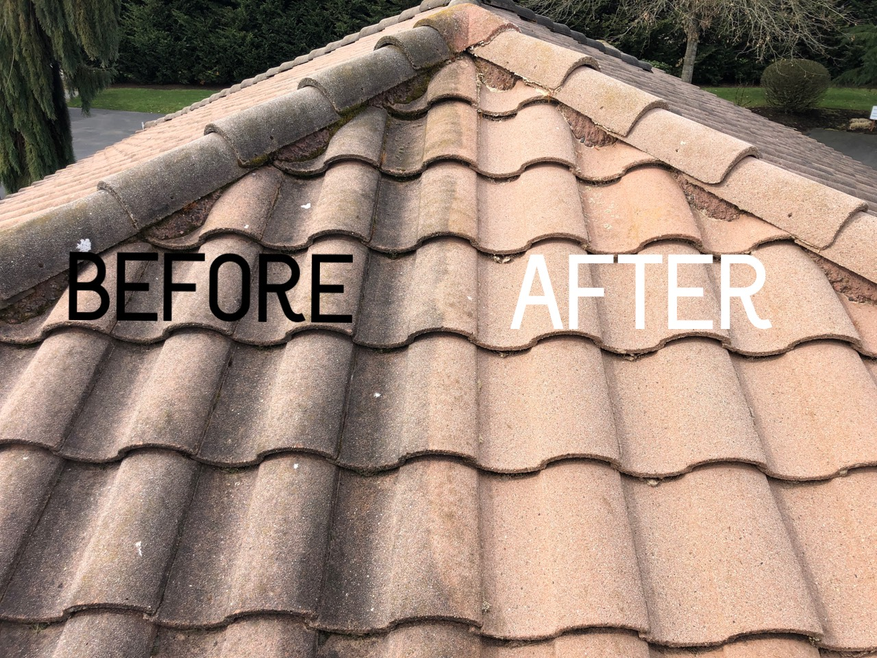 Tile Cleaning Before and After.jpg