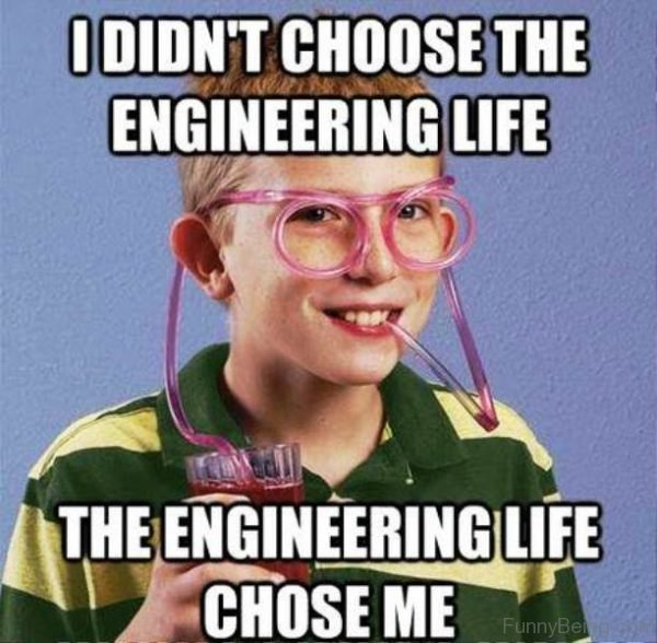 I-Didnt-Choose-The-Engineering-Life-600x588.jpg