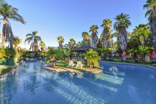 Desert-Palms-photo-5.jpg