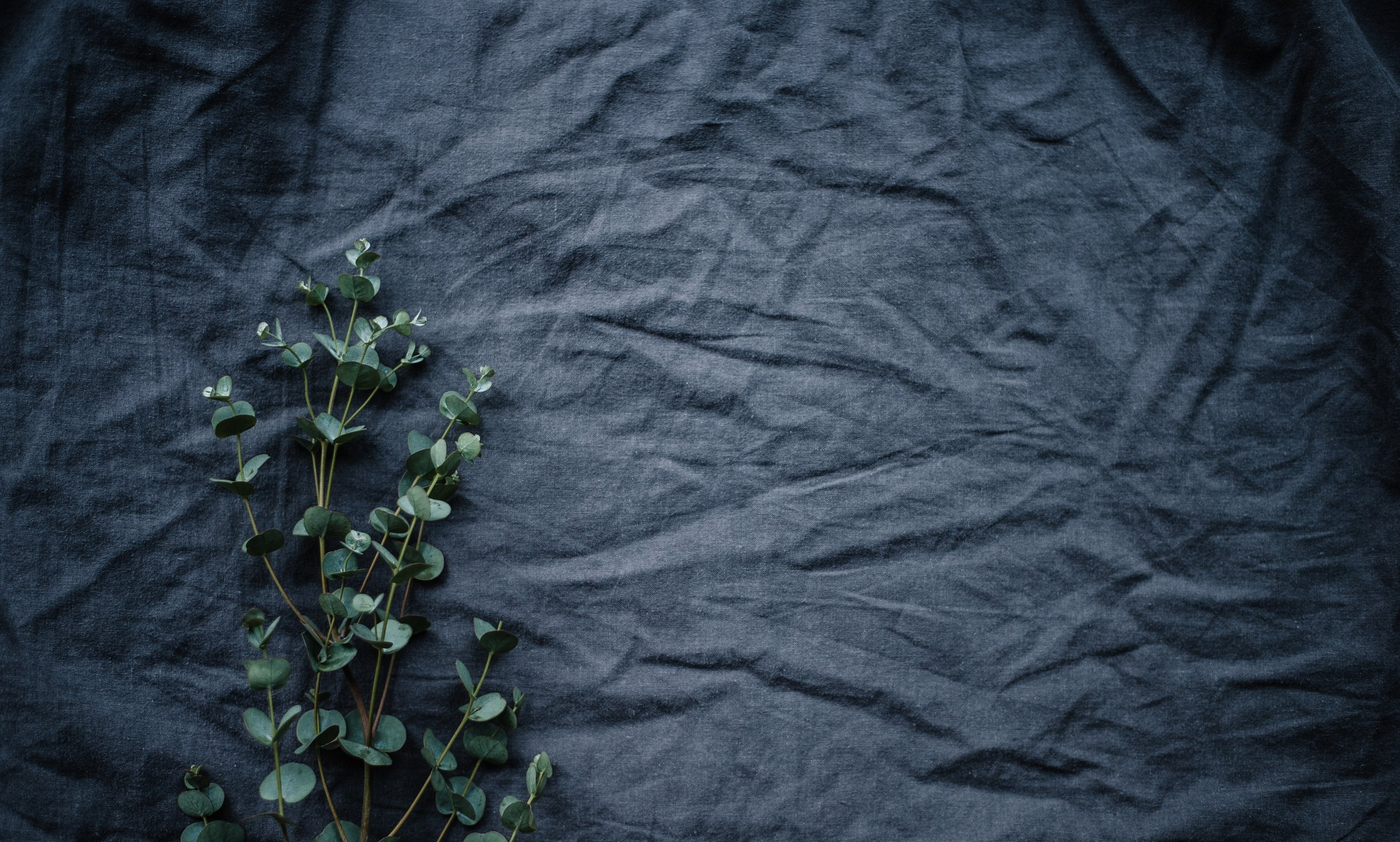 Eucalyptus branches laid over a wrinkled piece of navy blue linen