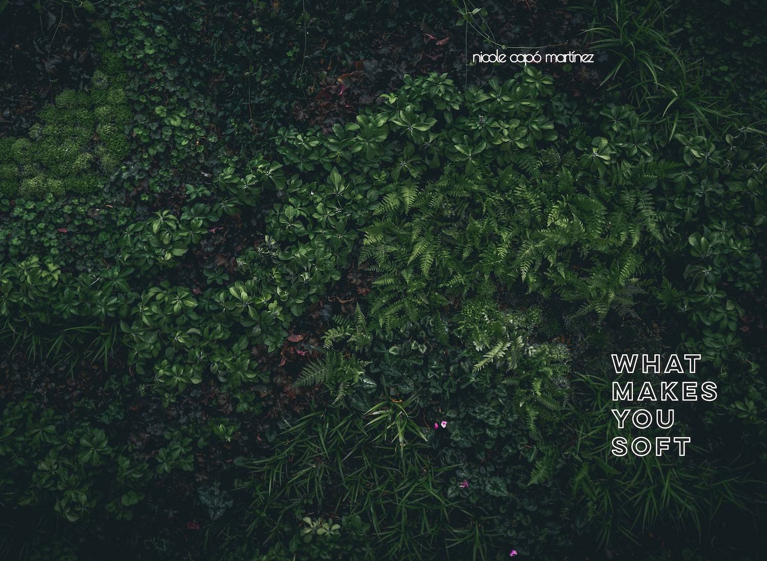 """""""what makes you soft"""" book cover image: greenery overlaid with white letters"""