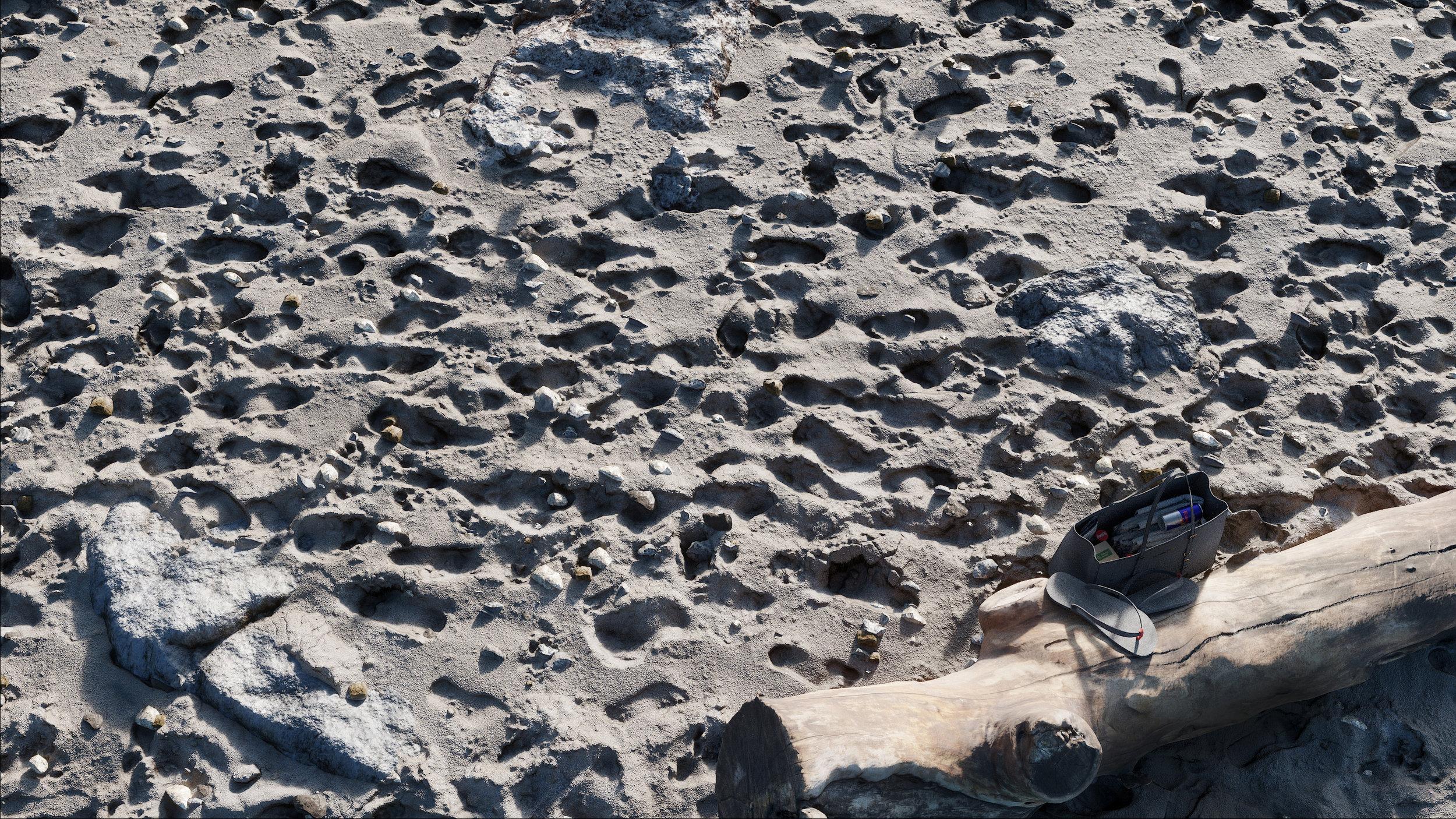 Beach Footprints_smaller.jpg