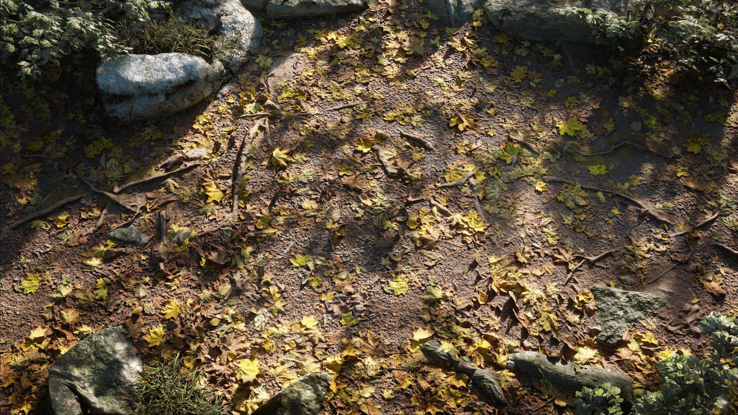 Forest Leaves_smaller.jpg