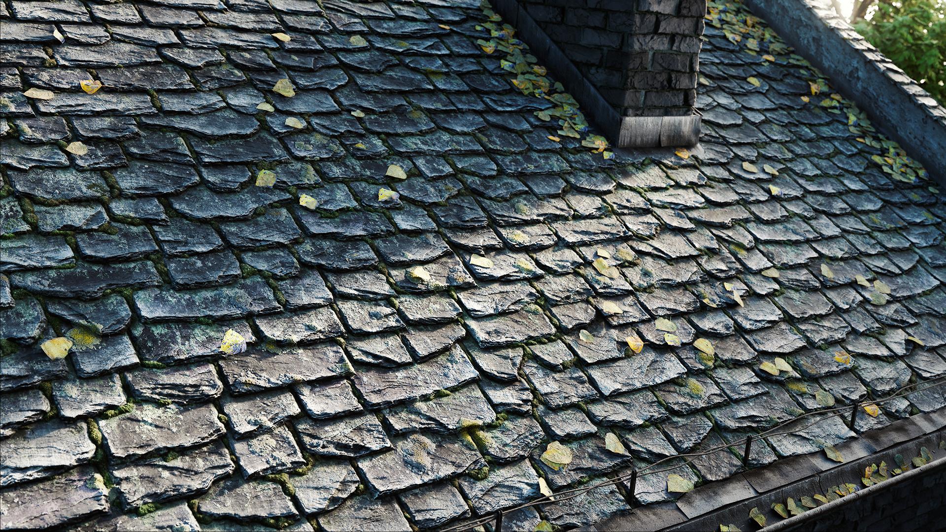Roof Tiles Damaged.jpg