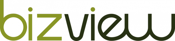 Bizview-600x141 (1).png