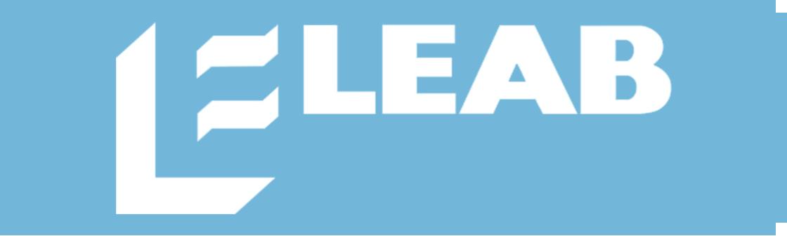 Mall blå - Leab.png