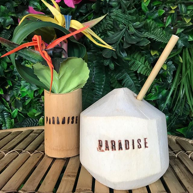It's Friday, let's go coconuts! 🥥🥥 •  We're now selling young branded coconuts at paradise 🌴🌺🥥 • #getinvolved #coconutsinparadise #coconutwater